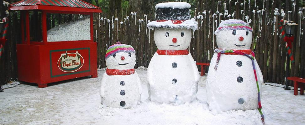 Aldeia do Papai Noel - Parque Knorr